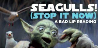 video nonsense di yoda star wars seagulls stop it now