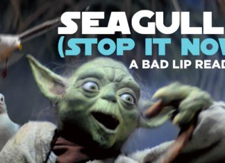 video nonsense di yoda star wars seagulls stop it now