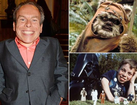 warwick davis in star wars