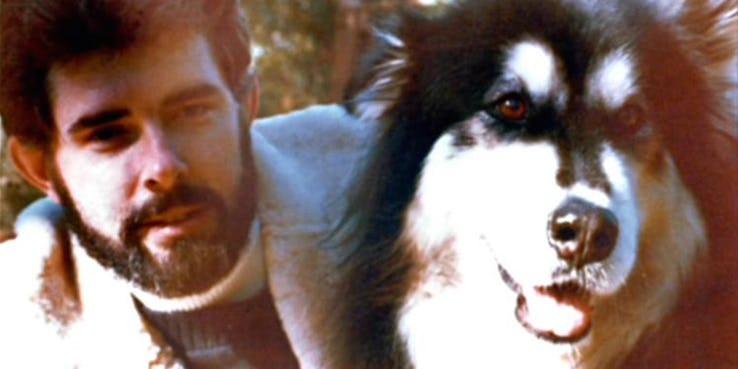 chewbecca origini nome aspetto lucas cane indiana